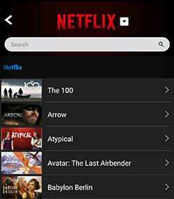 Netflix shows listing on PlayOn Cloud